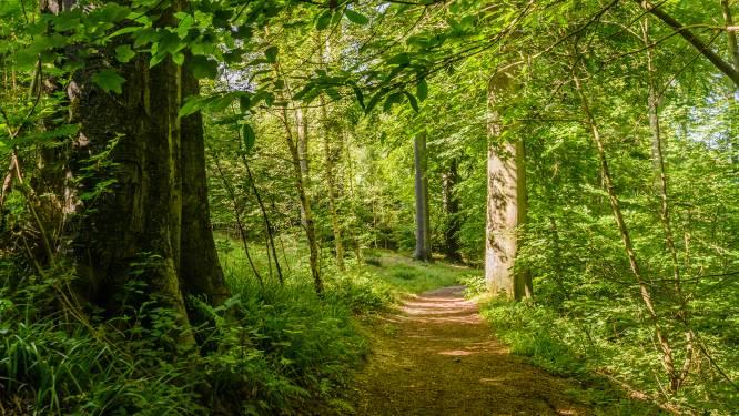 Geen extra straf voor slagen aan 14-jarige in bos in Menen