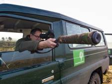 'Dierenbescherming baseert conclusie Oostvaardersplassen op incidenten'