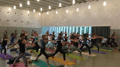 Yogaland heet ook beginners welkom
