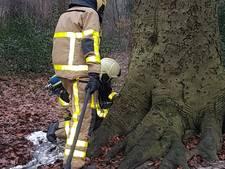 Bos achter AOC Twello dicht na brand