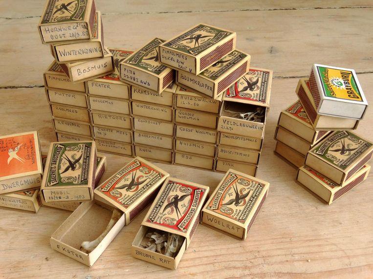 Uit de omvangrijke nalatenschap van Jacobus Walters: luciferdoorsjes met botjes van vogels en kleine dieren uit de stad Beeld Collectie Martin Melchers