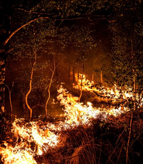 Grote natuurbrand in Limburg onder controle