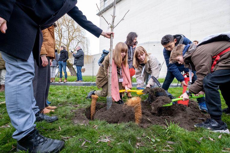 Kinderen planten een Anne Frankboom aan Kazerne Dossin