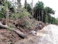 Schadepost Roosendaal van 9 ton door valwind eind juli