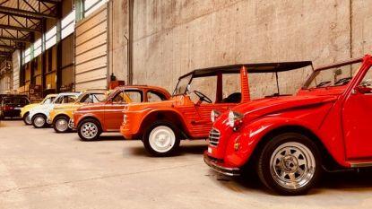 Kortessem is eventjes het walhalla voor autoliefhebbers: zeldzame iconen uit autogeschiedenis gaan onder de hamer