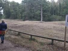 Eerste en Tweede Heide in Rijssen worden weer één: 'Zo vergroten we het leefgebied van dieren'