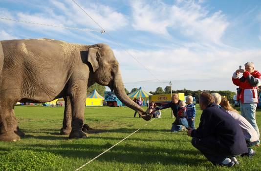 Circus op het evenemententerrein op de hoek Marknesserweg/Kamperweg. Archieffoto ter illustratie: Vedapress