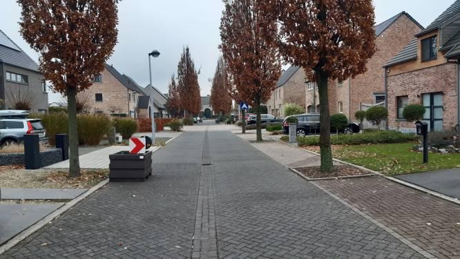 Bloembakken moeten zone 30 afdwingen in de Anton Van Wilderodestraat