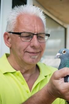 Betuwse duivenmelkers klaar voor nieuw seizoen