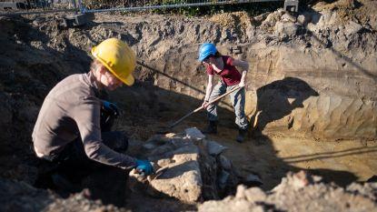 Archeologen ontdekken eeuwenoude muren van poortgebouw in Nattenhaasdonk