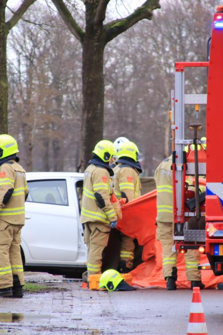 Automobilist overleden na frontale botsing met boom in Harskamp