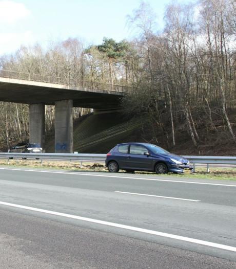 Dubbele file na twee ongelukken op A1 bij Rijssen