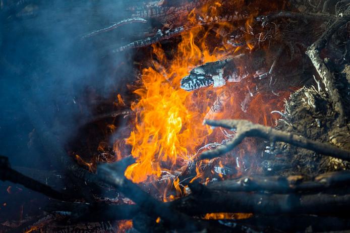 Bosbrand in Son en Breugel.