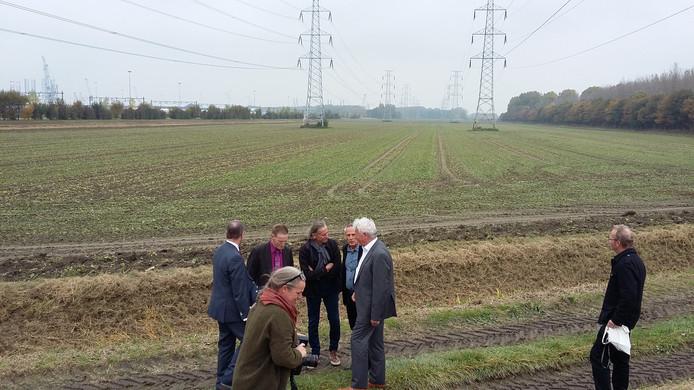 Een van de stukken grond aan de rand van het sloegebied waar Solarpark Scaldia komt.