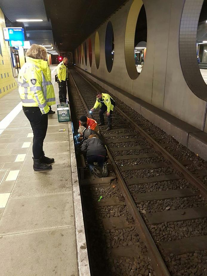 Kat Binkie wordt gevangen met een vangkooi op het spoor Rotterdam-Blaak
