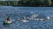 Izegemse Triatlon wijkt voor zwemproef uit naar De Gavers: 480 sportievelingen gaan uitdaging aan
