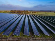 Elektriciteitsnet kan wildgroei zonneparken niet aan