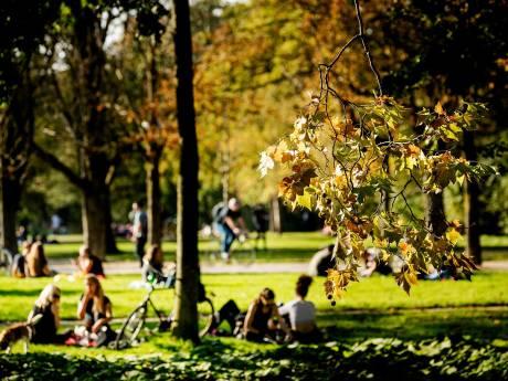 Ongekend: vijf zomerse dagen op rij in oktober