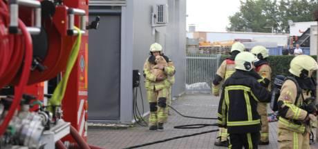 Brandweer rukt uit voor brand in Rijssen; twee honden gered