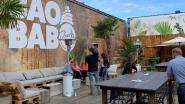 Zomerbar in Herentals wil vanaf dit weekend tot 750 personen ontvangen