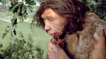 Studie: neanderthalers maakten vuur met stenen werktuigen