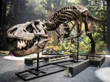 T. rex van Naturalis Leiden gekopieerd voor museum in Japan