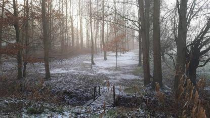 Winterwandeling door Vlassenbroek