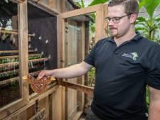 Gesloten Tropical Zoo trakteert fans op vlogs van babyaapjes en hagedissen