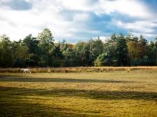 Droogte nog niet voorbij voor Zuidoost-Brabant