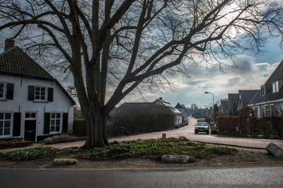 Deze zestien mooie locaties in Maas en Waal droegen jullie aan voor bescherming