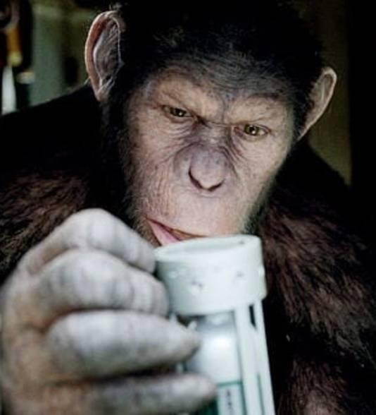 Superslimme apen heeft het Chinese onderzoek nog niet opgeleverd, maar geeft wel reden tot kritiek.