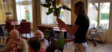 CDA fleurt tv-loze ouderen Boskamp op met zonnebloemen