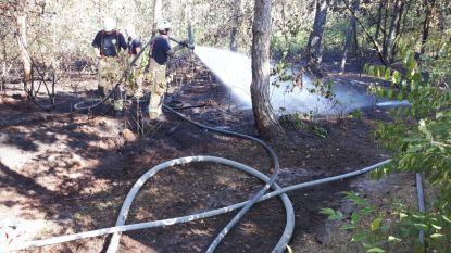 Opgelet, brandstichter aan het werk in regio Mol-Lommel