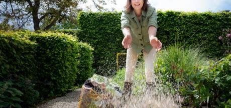 Het is nog lang geen herfst: met deze tips geef je je tuin een tweede leven