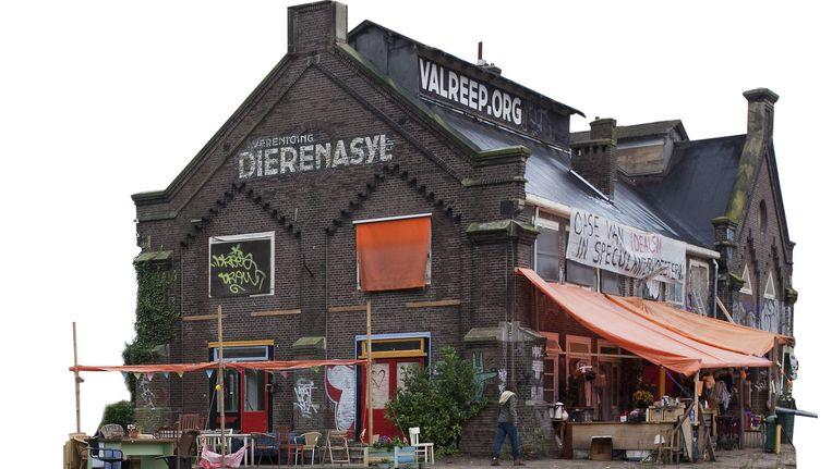 In 2011 was het voormalige dierenasiel op de Polderweg nog gekraakt, nu komt er een brouwerij in. Beeld Maarten Brante