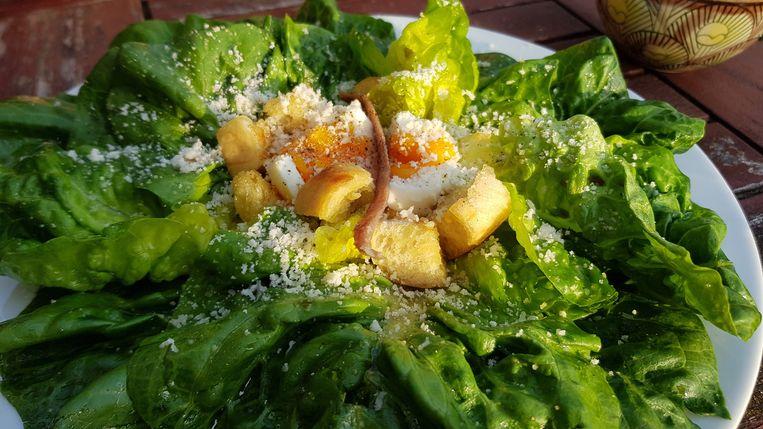 Cesare's salade met croutons en parmezaan. Beeld Marie Louise Schipper