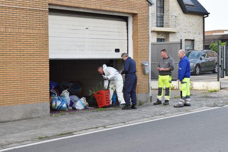Gemeentearbeiders haalden de plantjes uit de woning.