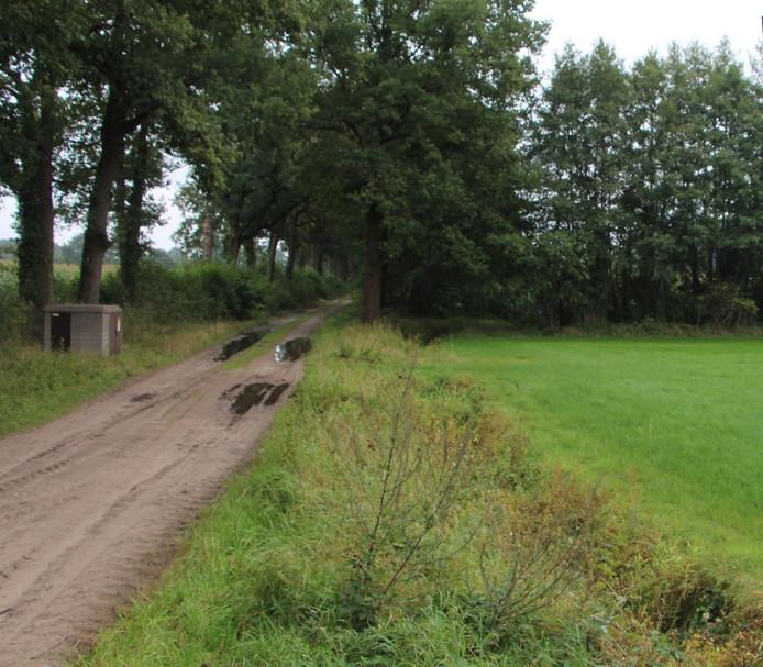 In het kader van de actie 'landjepik' houdt Berkelland in de gaten of agrarische percelen niet spontaan worden uitgebreid met aangrenzend groen in de vorm van wegbermen en houtwallen.