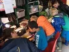 Hoe later, hoe slapper het geklets van de Scouts in Eindhoven