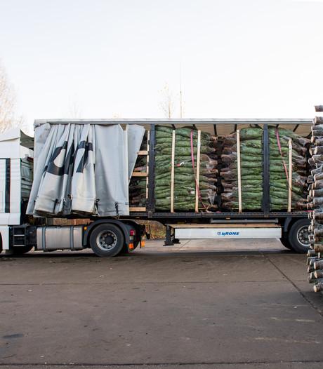 Meer dan 500.000 kerstbomen op Twente Airport