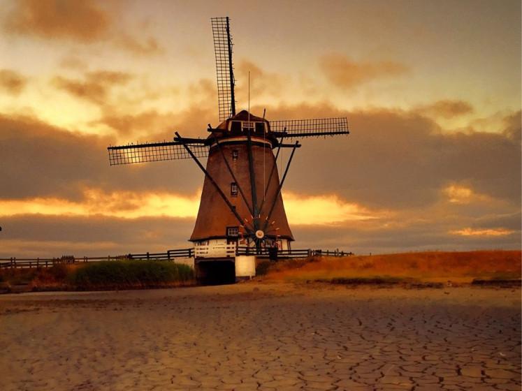 Droogte transformeert Texel tot Sahara