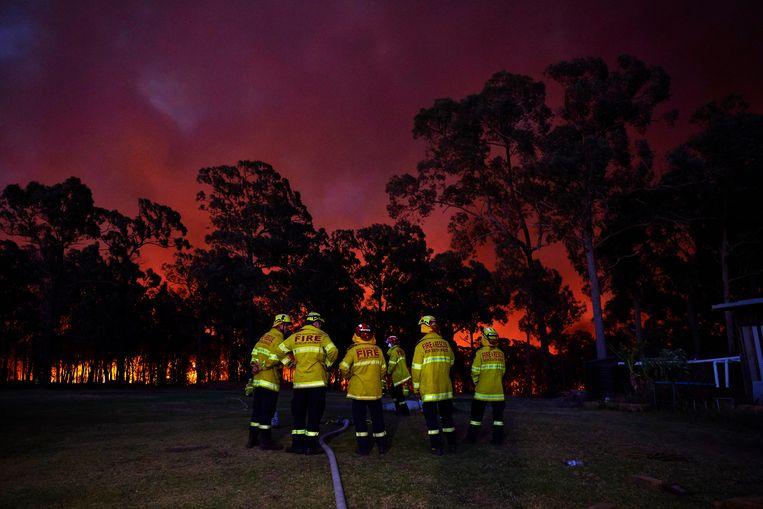 Brandweerlieden wachten op instructies in Colo Heights, New South Wales. Beeld Getty Images