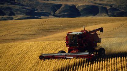 Landbouw veel grotere bron van fijnstof dan gedacht
