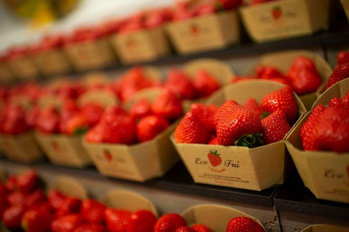 De enige echte Hoogstraatse aardbeien.