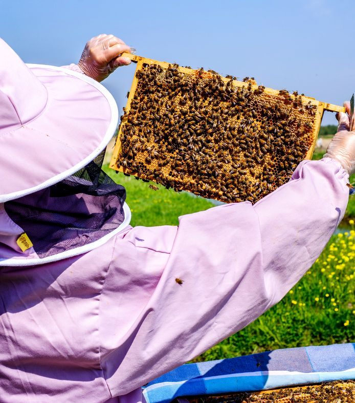 """Esther is in haar vrije tijd bijenhoudster. ,,Ik heb een drukke baan. Bij de bijen word ik gedwongen tot rust te komen."""""""