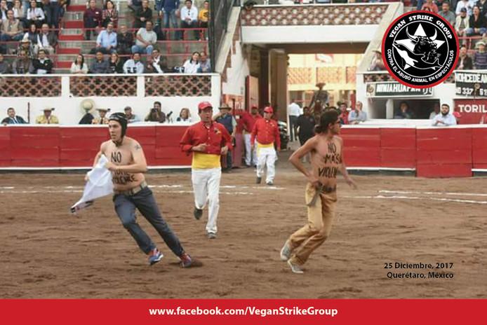 Peter Janssen en zijn collega verstoorden onlangs een stierengevecht in Mexico. Bij een ander gevecht in Colombia verwondde de Nederlander zich.