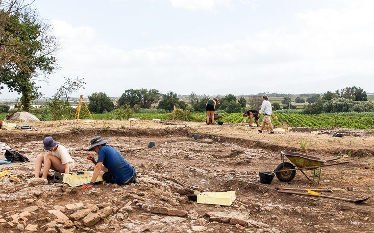 De archeologische resten bevinden zich grotendeels op het terrein van Casale del Giglio, een van de grootste wijnhuizen in dit deel van Italië. Beeld Angelo van Schaik