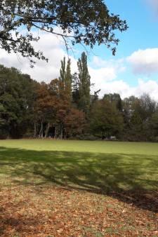 Eva moet na 20 jaar weg uit boshuisje in Winterswijk, zegt Raad van State