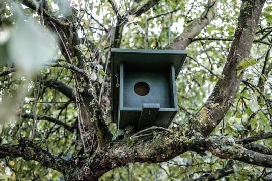 Een van de nieuwe nestkasten.