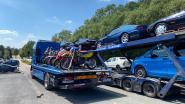 Hoogstratenaar betrokken bij internationaal drugsdossier: 130 wagens, luxegoederen en 2 miljoen euro cash in beslag genomen